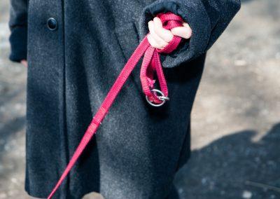 Hund und Herrchen - Pink verbunden